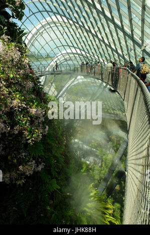 View of interior of Cloud Forest, Gardens by the Bay, Singapore - Stock Image