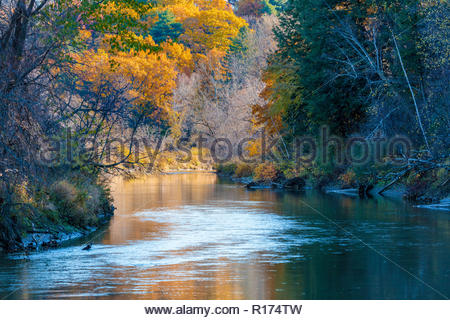 Autumn on the Rouge River in Rouge National Urban Park an urban wilderness in Toronto Ontario Canada. - Stock Image