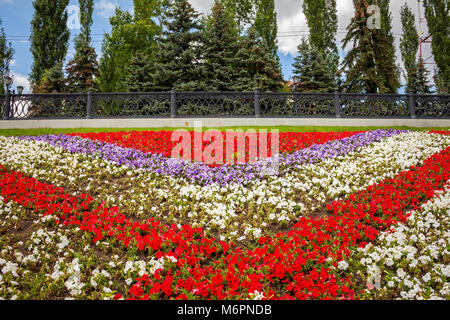 Large flower bed and trees,flower bed with flowers in the park - Stock Image
