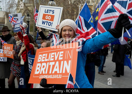 On the day that Prime Minister Theresa May's Meaningful Brexit vote is taken in the UK Parliament, Leave supporters protest opposite the House of Commons, on 15th January 2019, in Westminster, London, England. - Stock Image