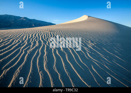 Sand dune and ripples, Mesquite Flat Sand Dunes, Death Valley National Park, California USA - Stock Image