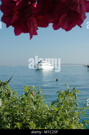 Beautiful flowers and yachts on the background of the Red Sea, Egypt - Stock Image