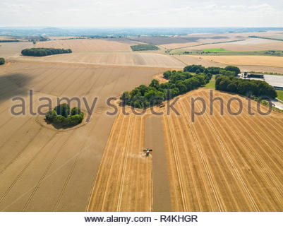 Harvest aerial landscape of combine harvester cutting summer wheat field farm crop - Stock Image