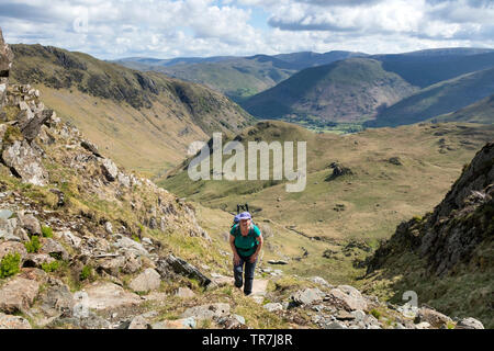 Tired Legs but Still Smiling.  With the Backdrop of the Eastern Fells a Walker Climbs out of Dovedale towards Dove Crag, Lake District, Cumbria, UK - Stock Image