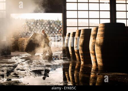 Male cooper working in cooperage with whisky casks - Stock Image