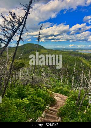 Skerwink trail in Newfoundland Canada - Stock Image