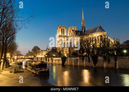 Notre Dame de Paris in night time, France - Stock Image