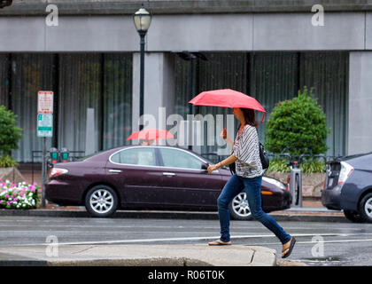 A woman walking alone on a rainy day holding an umbrella - USA - Stock Image