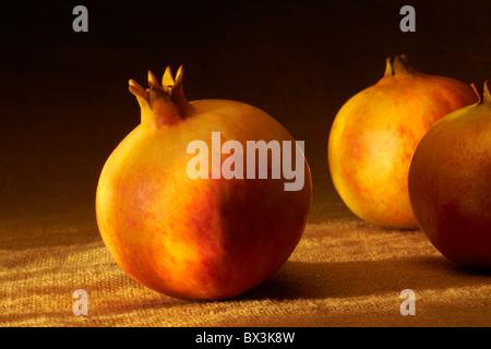Pomegranates - Stock Image