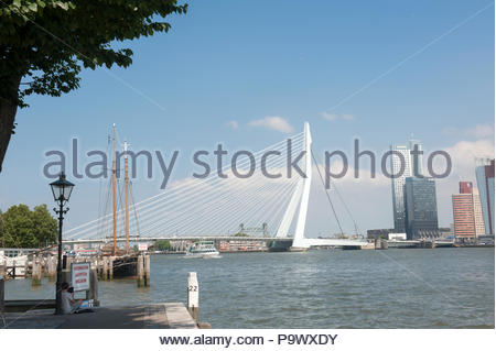 Rotterdam The Netherlands View across the River Nieuwe Maas to the Erasmusbrug and skyscrapers on the Wilhelminakade - Stock Image