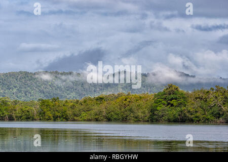 Atmospheric view of the Daintree River, Daintree National Park, Wet Tropics, Far North Queensland, FNQ, QLD, Australia - Stock Image