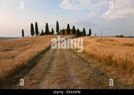 Farmhouse, Val d' Orcia, Tuscany, Italy - Stock Image