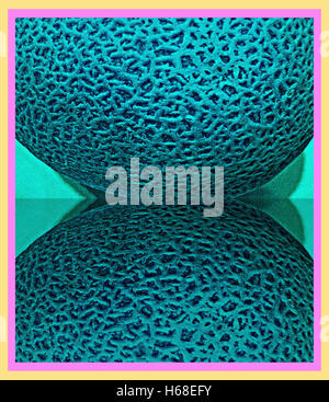 Melon Bipolar. Allegory. Photography digitally adjusted - Stock Image