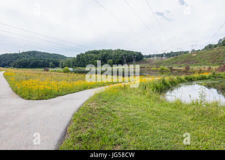 Greenway at Gupton Wetlands, Swan Pond Recreation Area, Harriman, TN - Stock Image