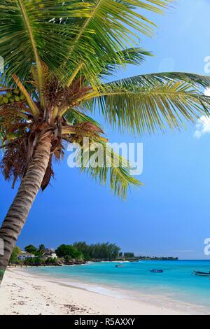 Karibik, Barbados, Bradenton Beach, Miami Beach Stockbild