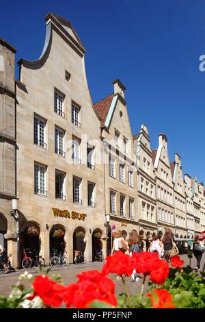 Alte Häuser am Prinzipalmarkt, Münster in Westfalen, Nordrhein-Westfalen, Deutschland Ich Giebelhäuser am Prinzipalmarkt, Münster in Westfalen, Keine Stockbild
