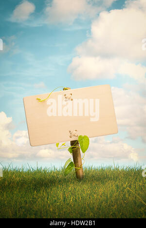 Leere Holzschild und natürlichen Hintergrund mit Rasen und blauer Himmel mit Wolken, Natur Informationskonzept, Stockbild