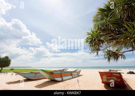 Asien - Sri Lanka - induruwa - Traditionelle langboote am Strand Stockbild