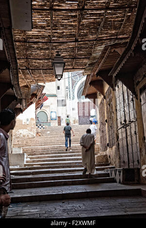 Treppe zu den Mosquée des Andalous, Fes, Marokko Stockbild