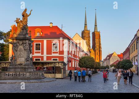 Die Kathedrale, Wroclaw, Polen, Europa Stockbild