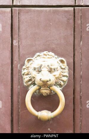 Specchia, Apulien, Italien - eine goldene alte Tür Knopf in der Form eines Löwen Stockbild