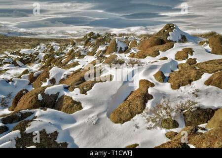 Felsvorsprung und Schnee. Hart Mountain National Antelope Refuge, Oregon Stockbild
