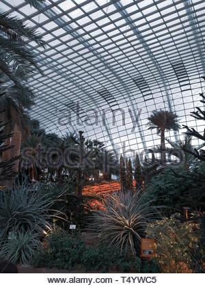 Verschiedene Arten von Pflanzen Stockbild