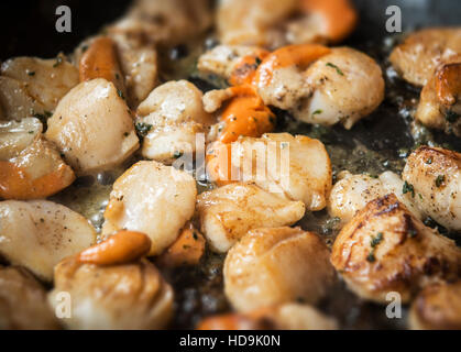 Einfache gegrillten Jakobsmuscheln und Korallen Rezept gekocht mit Butter und Petersilie, hautnah mit Schärfentiefe Stockbild