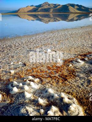 Salz Muster am Seeufer, Great Salt Lake, Utah Stansbury Insel Stockbild
