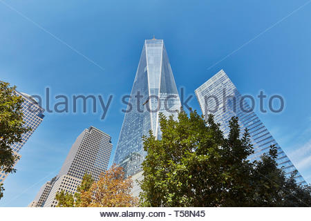 Blick nach oben. Die Oculus, World Trade Center Verkehrsknotenpunkt, New York City, USA. Architekt: Santiago Calatrava, 2016. Stockbild