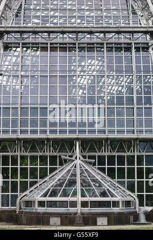 Berlin, Deutschland - der Botanische Garten Berlin-Dahlem. Detail der wichtigsten tropischen Gewächshaus Stockbild