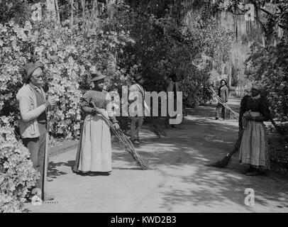 African American Hausmeister im Magnolia Plantation und Gärten in Charleston, SC. Die kehrmaschinen halten Stockbild