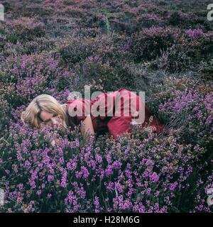 eine Frau liegt im blühenden Heidekraut Stockbild