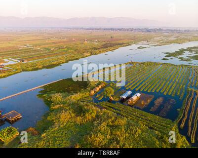 Myanmar (Burma), Shan Staat, Inle See, Kela schwimmenden Gärten (Luftbild) Stockbild