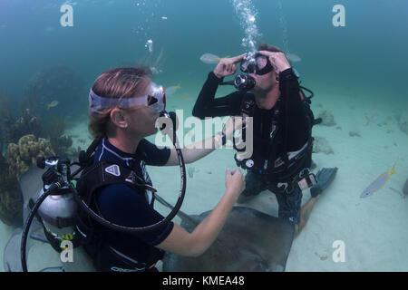 Taucher durchführen Mask clearing Fähigkeiten im seichten Wasser von Stingray City, Grand Cayman Stockbild