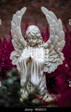 Abbildung eines betenden kleiner Engel als Teil einer Grabstein auf einem Grab mit violetten Hintergrund Stockbild