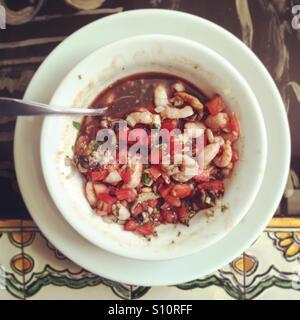 Garnelen und Conch Ceviche. Stockbild