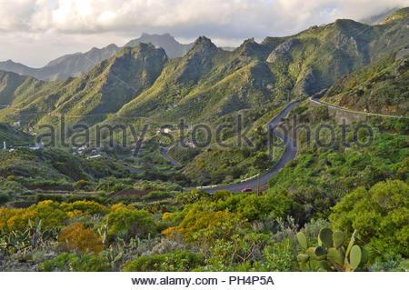 Straße durch die raue Landschaft der Anagagebirge im Nordosten von Teneriffa Kanarische Inseln Spanien. Winde vom Atlantik machen diese Region Grünen Stockbild