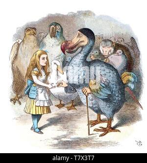 ALICE's Adventures in Wonderland Alice erfüllt die Dodo in einer John Tenniel Abbildung aus der Originalausgabe von 1865 Buch von Lewis Carroll Stockbild