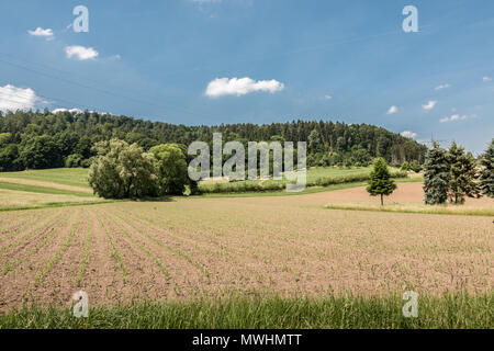 Deutsche Landschaft mit Wäldern, Feldern und Wiesen Stockbild