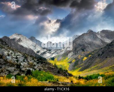 McGee Creek Canyon mit Herbst farbige Espen. Inyo National Forest. California Stockbild