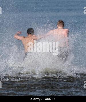 19 April 2019, Berlin: Zwei Männer tauchen Sie ein in das Wasser zu Beginn der Badesaison im Strandbad Wannsee. Der Lido beginnt immer der Badesaison am Karfreitag. Der Eintritt ist frei bis Ostermontag. Foto: Paul Zinken/dpa Stockbild