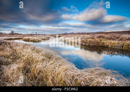 Herbst morgen am Fokstumyra Nature Reserve, Dovre, Norwegen. Stockbild