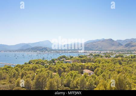 Port de Pollenca, Mallorca, Balearen, Spanien - von Wald umgeben finden Sie Port de Pollenca Stockbild