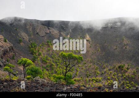 Vulkan San Antonio, Kanarische Inseln, La Palma Fuencaliente Stockbild