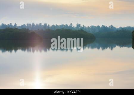 Sonnenaufgang am See Marawila, Sri Lanka Stockbild