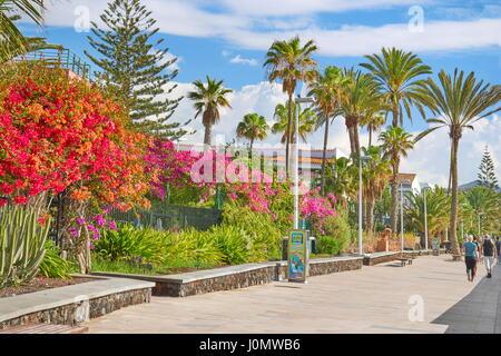 Playa de Ingles Promenade, Gran Canaria, Spanien Stockbild