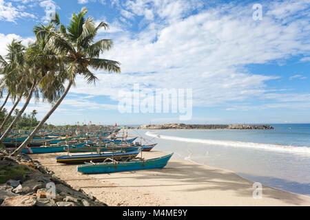 Sri Lanka, Asien, Dodanduwa - Palmen an der Küste von dodanduwa Stockbild