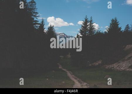 Schöner Feldweg in Jasper, Kanada Stockbild