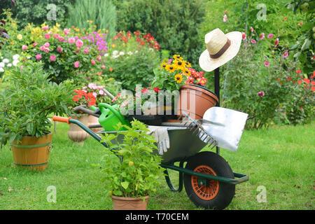 Garten 667 Stockbild